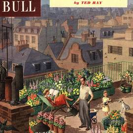 The Advertising Archives - John Bull 1950s Uk Roof Gardens