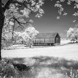 Guy Whiteley - Joseph Poffenberger Farm 8D00232