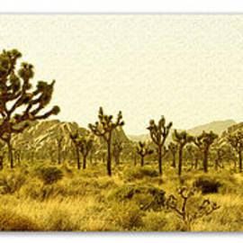 Ben and Raisa Gertsberg - Joshua Tree National Park Art Poster - California Collection