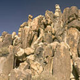 Joshua Tree Rock Formation 2 by Peter J Sucy