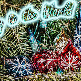 Joy To The World by Dave Hahn