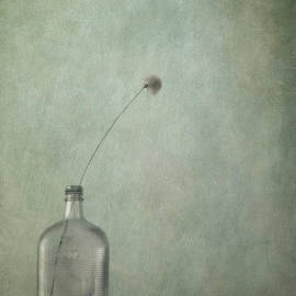 Priska Wettstein - Just An Old Bottle And Its Cap
