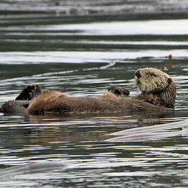 Just Relaxing by Shoal Hollingsworth
