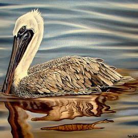 Juvenile Pelican by Phyllis Beiser
