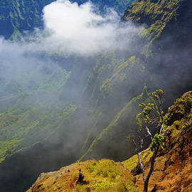 Kalalau Valley Mist by Kevin Smith
