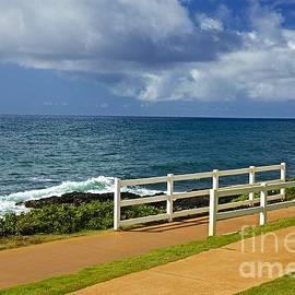 Barbara Zahno - Kauai Beach - Morning Storm