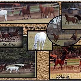 Bobbee Rickard - Horses Kickin It