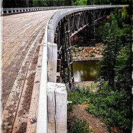 Kiskatinaw Curved Wooden Bridge  by Roxy Hurtubise