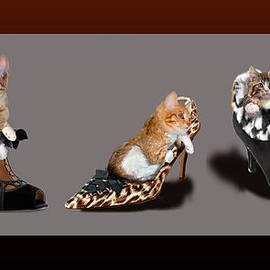 Kittens in designer ladies Shoes by Regina Femrite