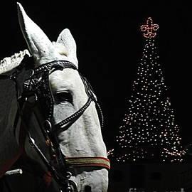 New Orleans Christmas, Kluck, Kluck, Kluck, Da, Da, Da, Da, Dat, Da, Da,