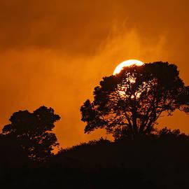 Dustin  LeFevre - Kona Sunset