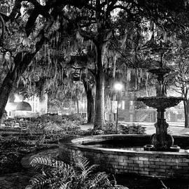 Lafayette Square by Renee Sullivan