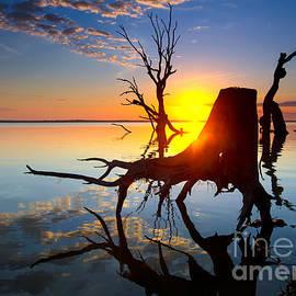Bill  Robinson - Lake Bonney Sunrise