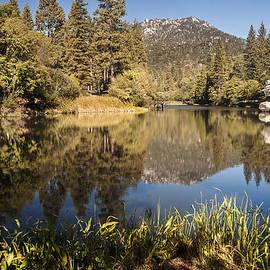 Lake Fulmor Reflection by Lee Kirchhevel