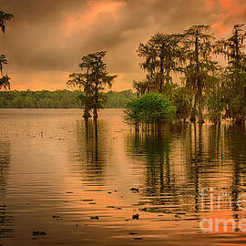 Lake Martin Sunset by Priscilla Burgers