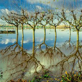 Lake Pateira II by Alexandre Martins