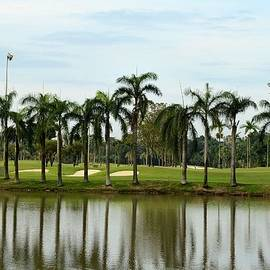 Imran Ahmed - Lake sand traps palm trees and golf course Singapore