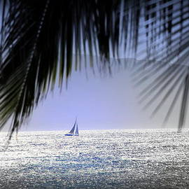 Lana'i Sail by Michele Hancock Photography