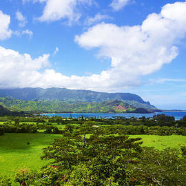 A Land Called Hanalei  by Kevin Smith