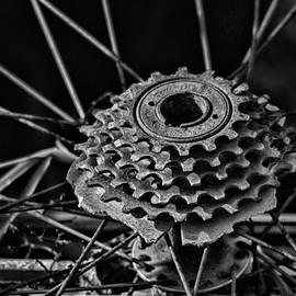 Last Ride by Sue Capuano