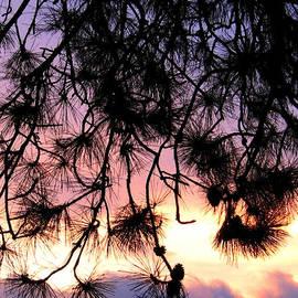 Will Borden - Lavender Sunset Painting