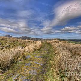 Darren Wilkes - Lead The Way