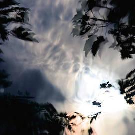 John Jacobsen - Leaves in a Storm