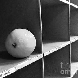 Lemon 1391-1480 by WaLdEmAr BoRrErO