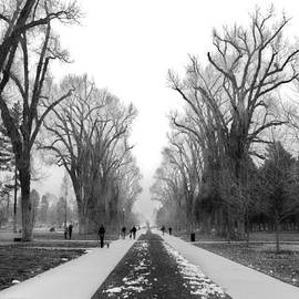Liberty Park Walkway by Tarey Potter