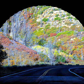 Light At The End Of The Tunnel by Douglas Taylor
