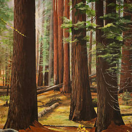 Light in the Forest by Bill Dunkley