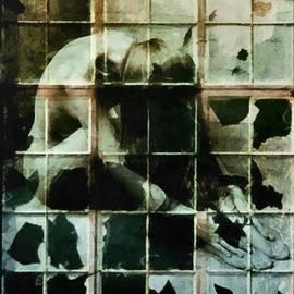 Like a broken window by Gun Legler