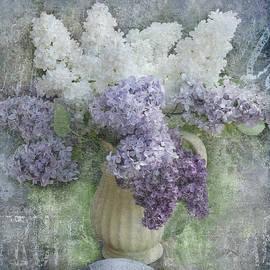 Lilac by Jeff Burgess