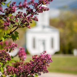 Thomas Schoeller - Lilac and Vintage New England Church -  Selective Focus