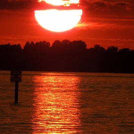 Lindau Island  Bodensee Sunset  by Colette V Hera  Guggenheim