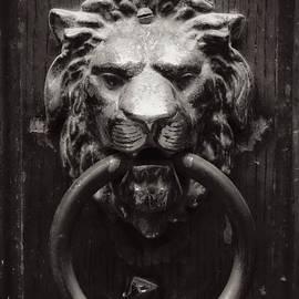 Carol Groenen - Lion Door Knocker