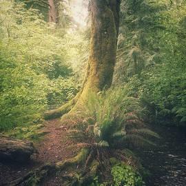 Alexander Kunz - Little Creek