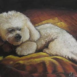 Little Dog on her Plllow by Melinda Saminski