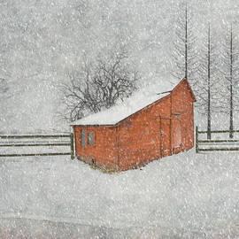 Juli Scalzi - Little Red Barn