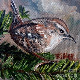 Julie Brugh Riffey - Little Wren in the Pines