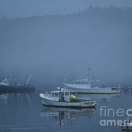 Alana Ranney - Lobster Boats At Rest