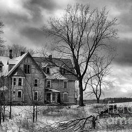 Michele Steffey - Long Hard Winter
