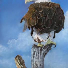 Marcus Moller - Long Pale Beak