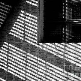 Steven Milner - Long Shadows