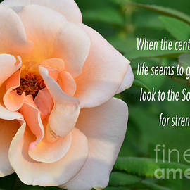 Look to the Son for your Strength by Debby Pueschel