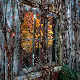 Reflecting Upon Autumn by T-S Photo Art