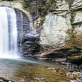 Looking Glass Falls by Elvis Vaughn
