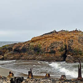 Jim Fitzpatrick - Looking out on the Pacific Ocean from the Sutro Bath Ruins in San Francisco