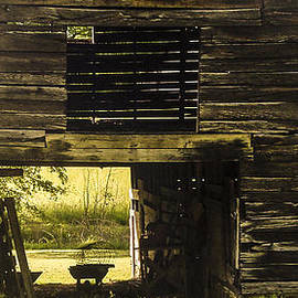 Robert J Andler - Looking Through