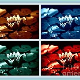 Lotus Flowers Collage by Susanne Van Hulst